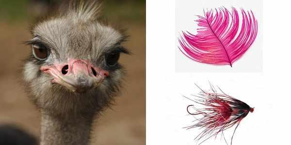 мушки из пера страуса